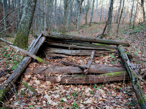 Remnants of old homestead in Sugarloaf Branch