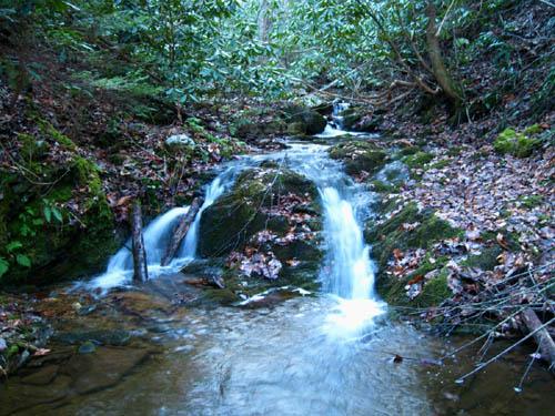 Cascades along Longarm Branch