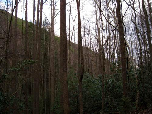 Longarm Ridge