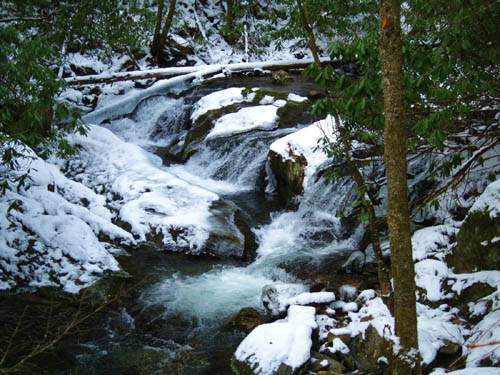 Cascades along Rocky Fork Creek