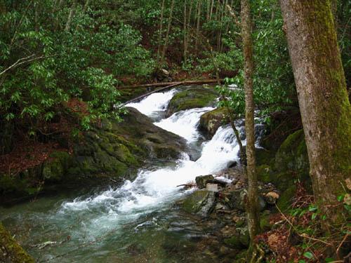 Cascades along Rocky Fork