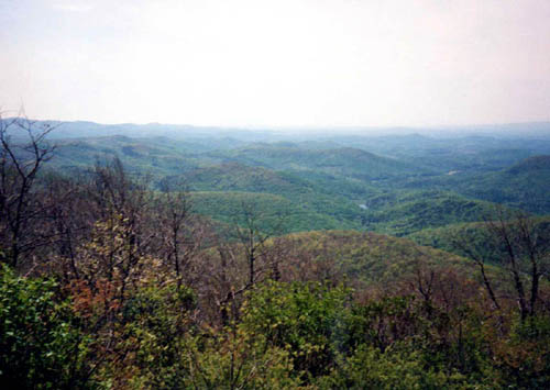 View from first 'white blaze' on Springer Mtn. Georgia