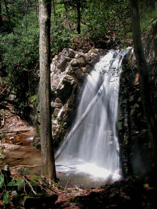 Lower part of Gentry Falls (Photo by RAT)