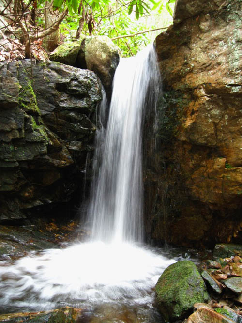 Lower Jones Branch Falls