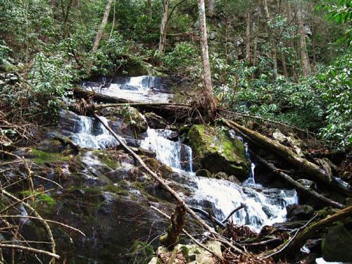 Jones Branch Falls