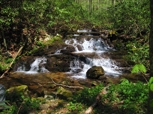 Cascades along Gentry Creek