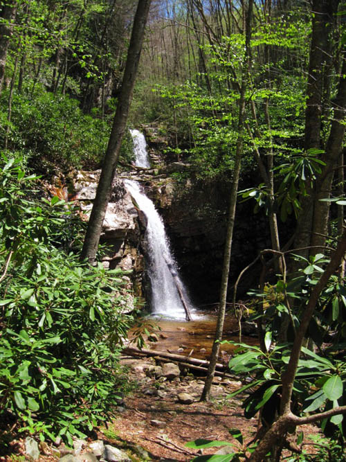 Gentry Creek Falls